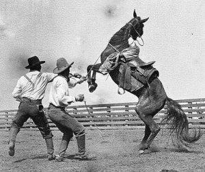 horsebreakers
